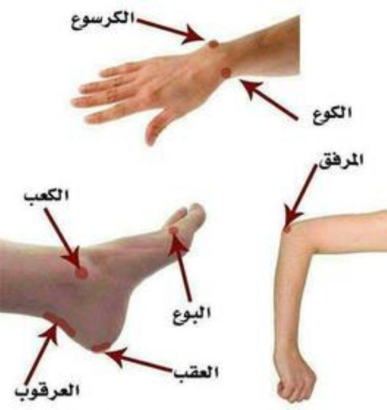 بالصور الفرق بين الكوع والبوع الطب العربي البديل